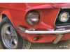 mustang-rouge-30x45-bord-1024