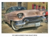 cadillac-rose-45x30-legende-1024